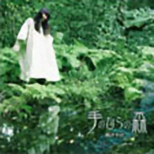 岡さやか「手のひらの森」 Sayaka OKA